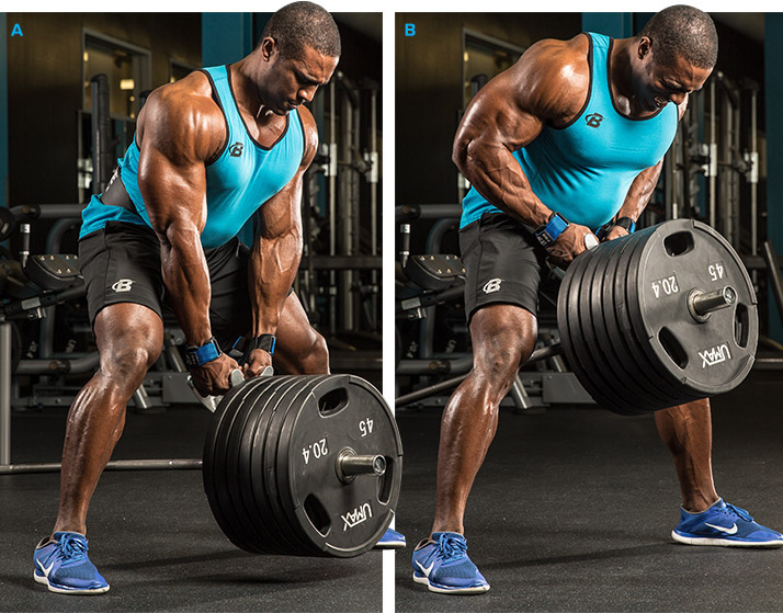 Sport Nutrition | Build Muscle Strength, Size, And